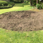 1 Ilkley Turfing Hedgehog Outdoor Yorkshire