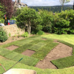7 Ilkley Turfing Hedgehog Outdoor Yorkshire