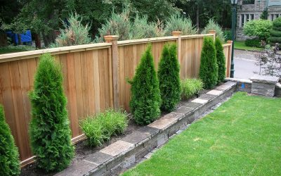 Build a Wooden Fence
